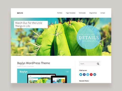 web--wordpress1
